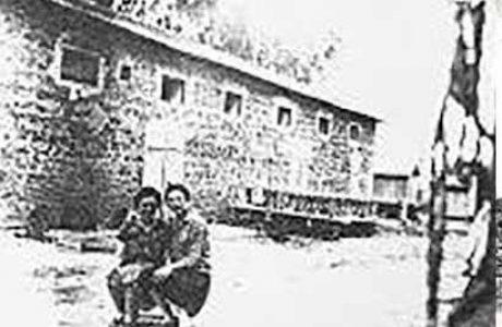 ראי-נוע, סיפורים מראשון הפיצפונת